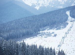 스키 리조트 풍경