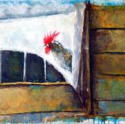 ראש תרנגול.jpg