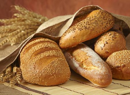 """This week's 10-Minute Torah (08/24/2019): """"Parashat Ekev"""""""