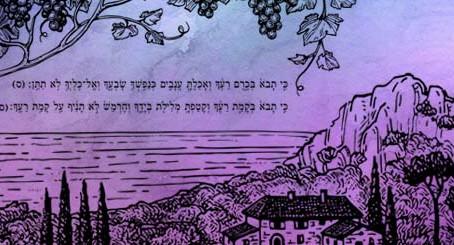 "This week's 10-Minute Torah (09/14/2019): ""Parashat Ki Teitzei"""