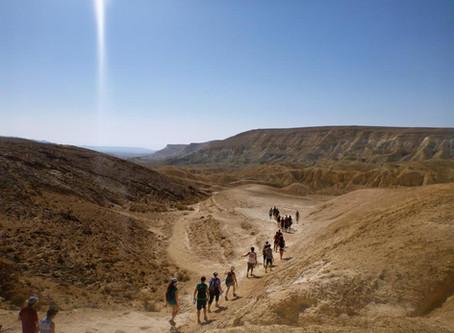 """This week's 10-Minute Torah (6/20/20): """"Parashat Shelach"""" 5780"""