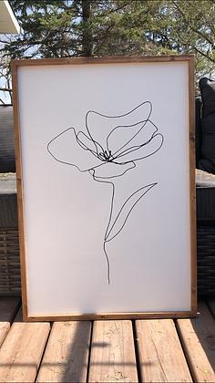 Line Art Poppy