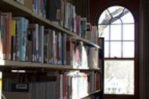 library window.jpg