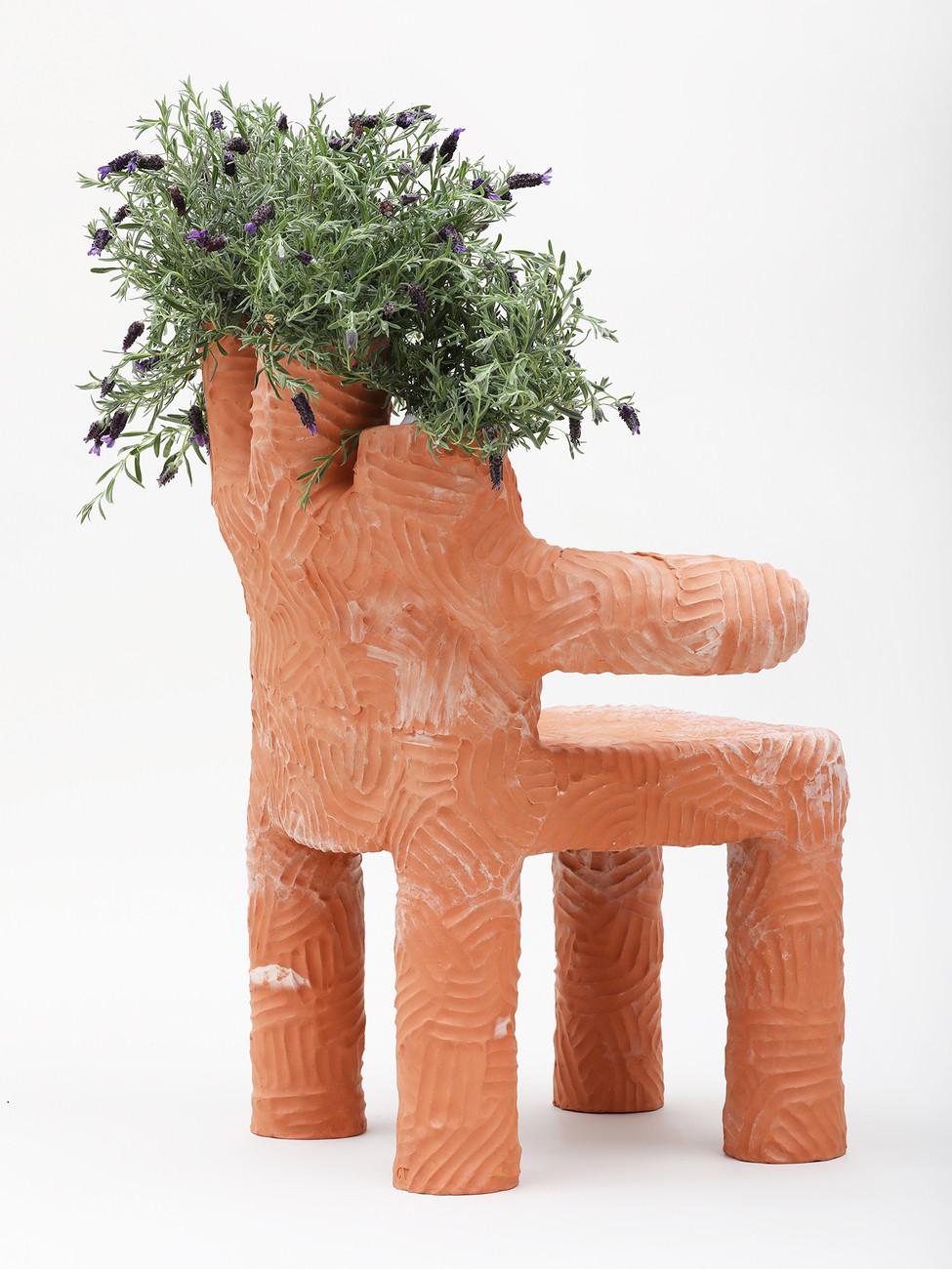 Colibri PLant Chair  (3).jpg
