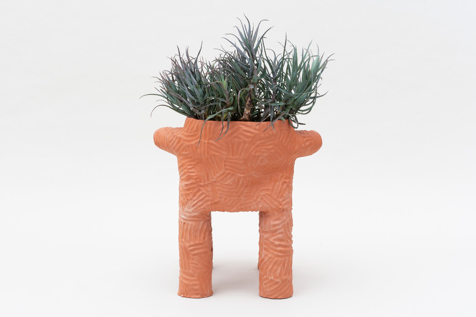 Magdalena Plant Chair   (2).jpg