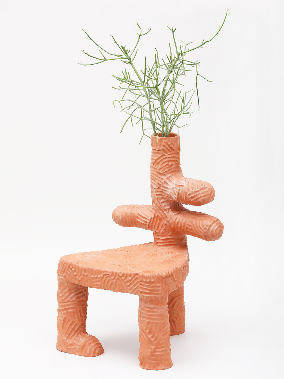 Parrot Plant Chair  (3).jpg