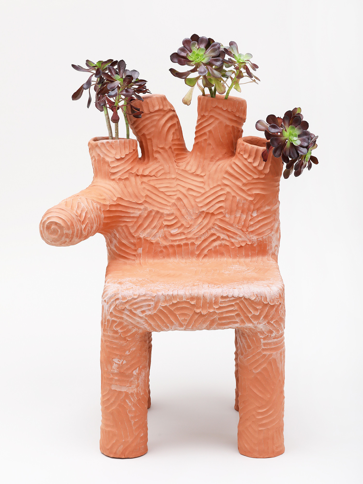 Colibri PLant Chair  (2).jpg
