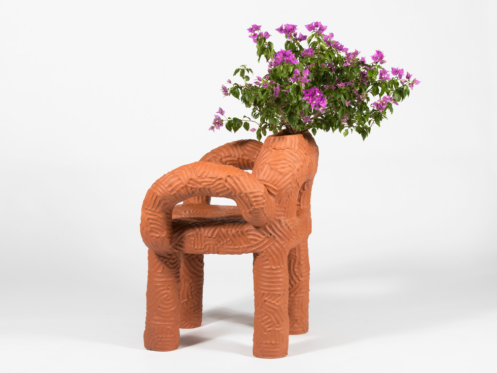 Zipolite PLant Chair  (2).jpg