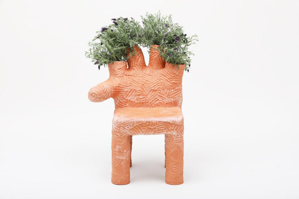 Colibri PLant Chair  (1).JPG