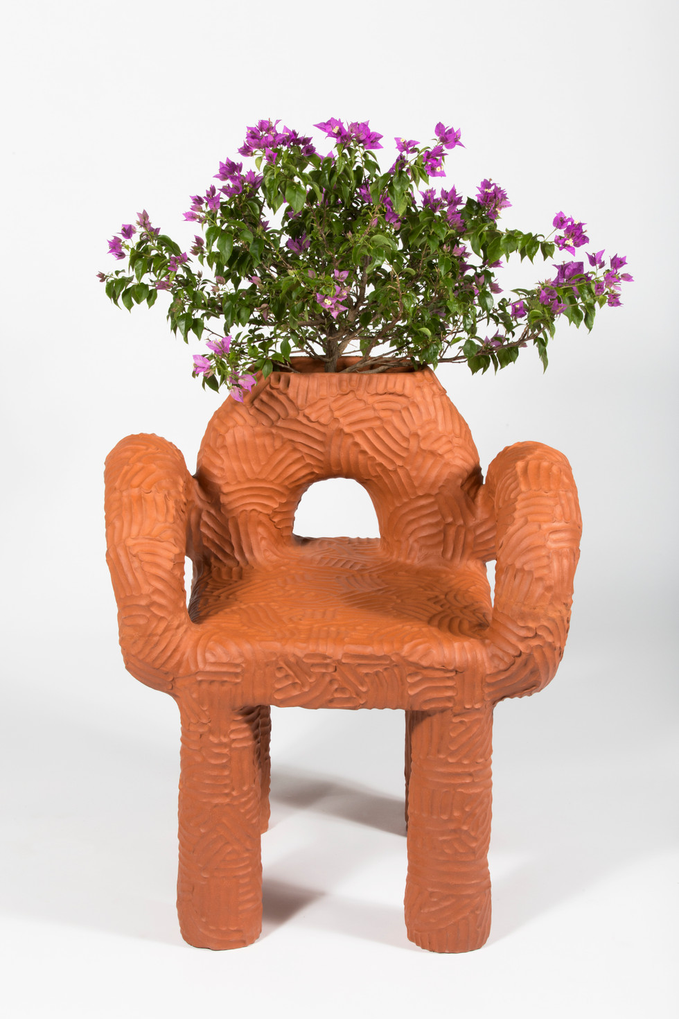 Zipolite PLant Chair  (3).jpg