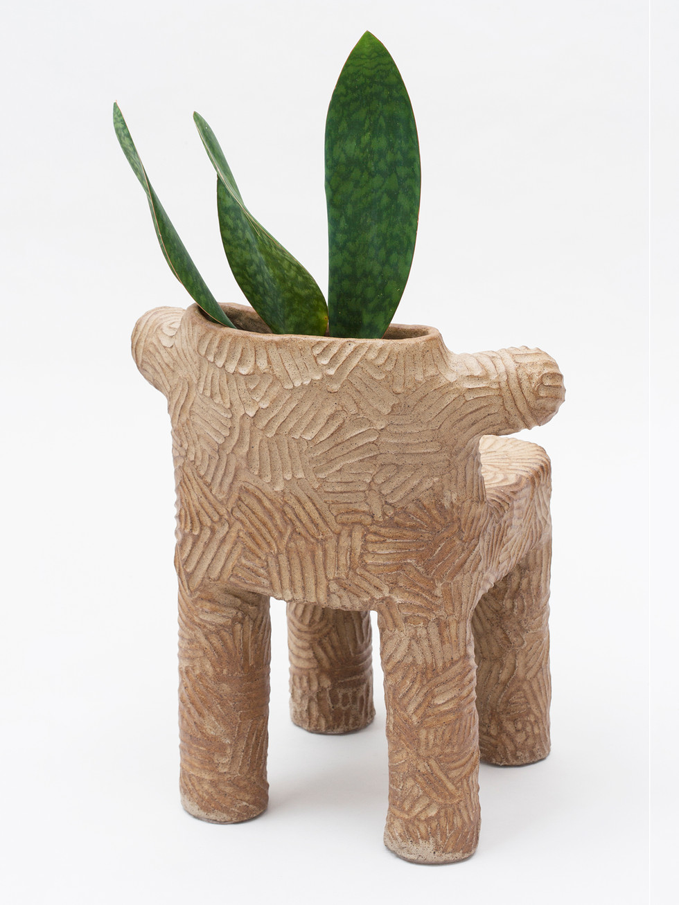 Tolima Plant Chair  (4).jpg