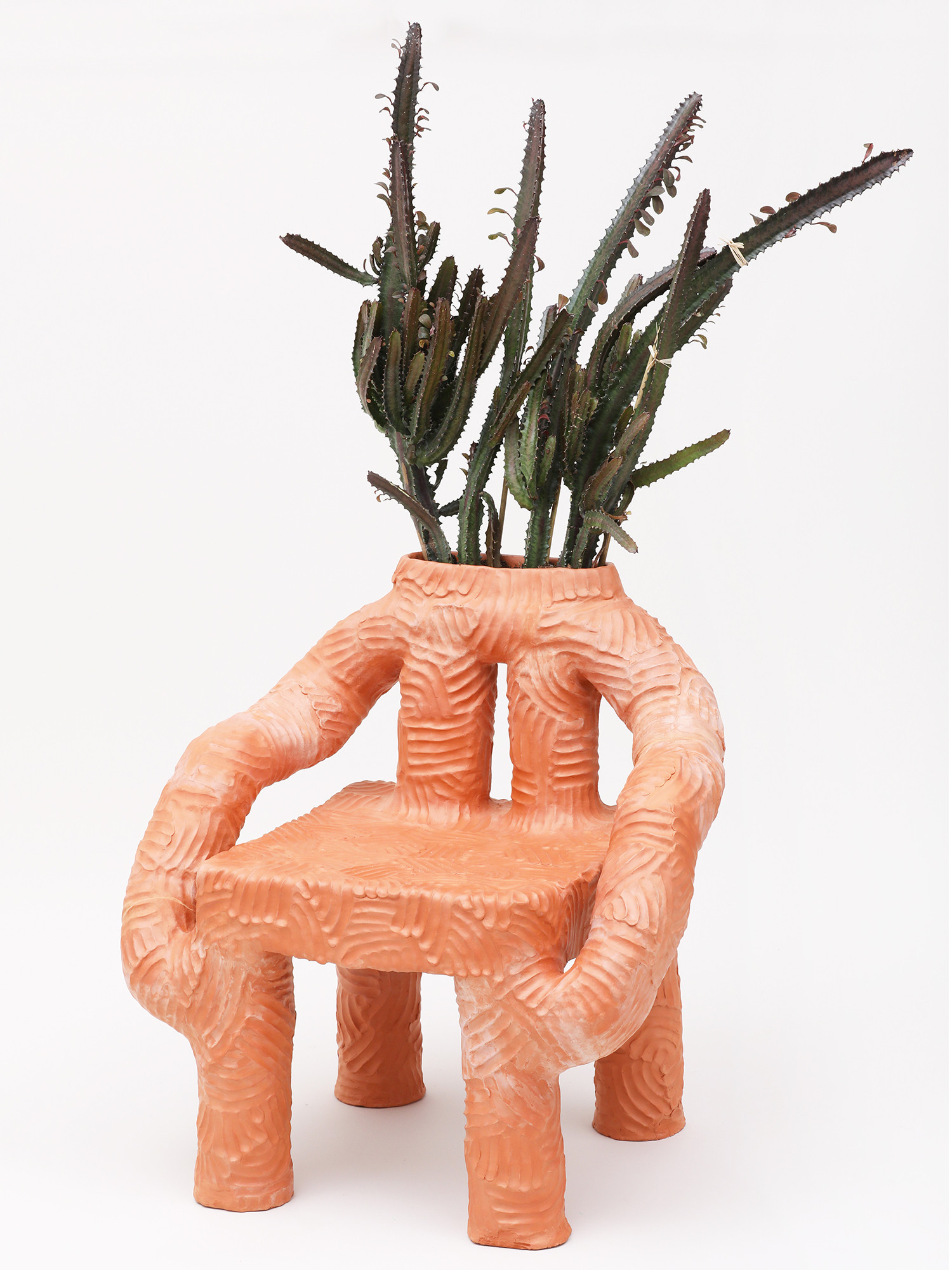 Tanza Plant Chair  (3).jpg