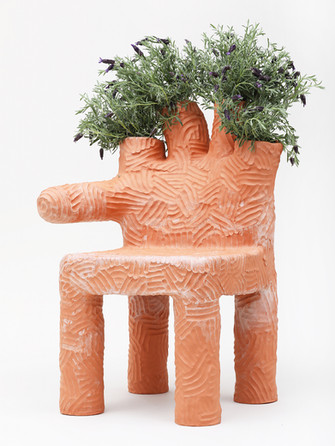 Colibri PLant Chair