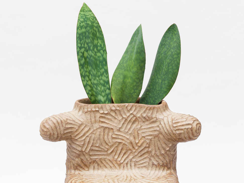 Tolima Plant Chair  (1).jpg