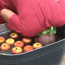 Dunking for Apples