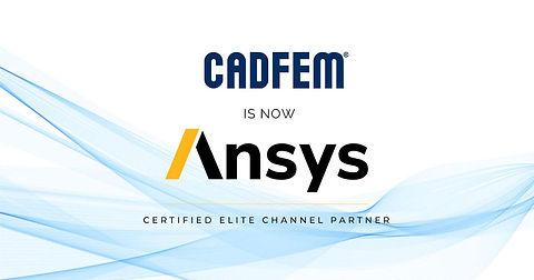 CADFEM ANSYS.jfif