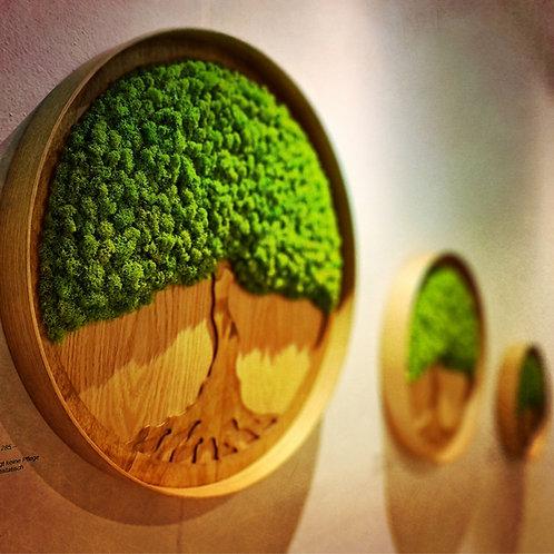 "Moosbild ""Lebensbaum"" 30cm"