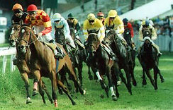 Simulcast Horse Racing for events.jpg