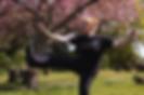 Blossomkick-01.png