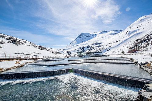 Frozen Architecture