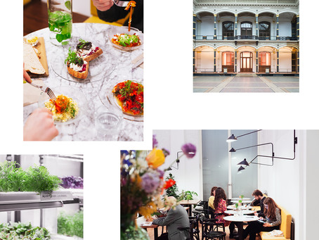 BEBA: MULTICULTURAL JEWISH CUISINE WITH AN INDOOR GARDEN AT THE GROPIUS BAU