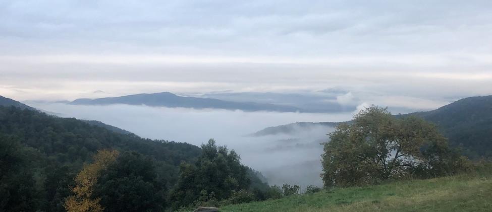 vistas-niebla.jpeg