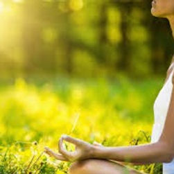 yoga%20natura_edited.jpg