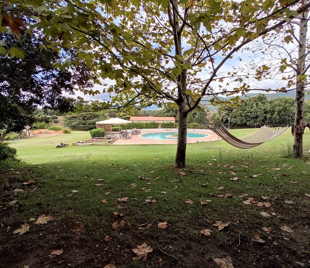jardin, hamaca, hojas, piscina.JPG