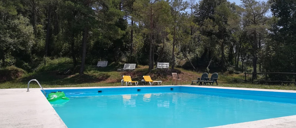 piscina-bosque.jpeg