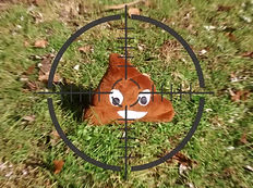toy poop on lawn framed in gun site