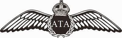 ATA wings