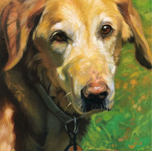 Heavens Portraits: Hannah, 8x10, Oils on Canvas