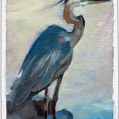 Blue Heron, 5x7, Oils on Linen