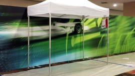 Graphics Design for Ballroom Walls, Large Event FIS