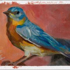 Blue Wings Pink Sky, 5x7, Oils on Linen