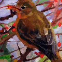 Scarlet Tananger, 5x7, Oils on Linen