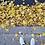 Thumbnail: Seasons