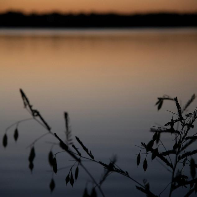 White Rock Lake