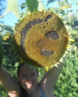 sunflower smile.jpg