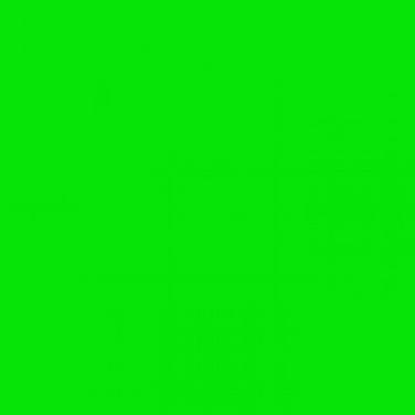 Fluro Green.PNG