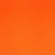 Fluro Orange.PNG