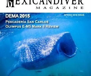 MDM Issue #9