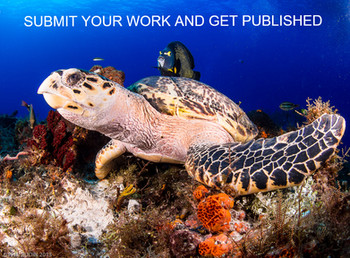 Want to be published in the Mexicandiver Magazine?