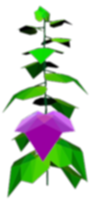 fsmp2020_Logo-Gurkenpflanze.png