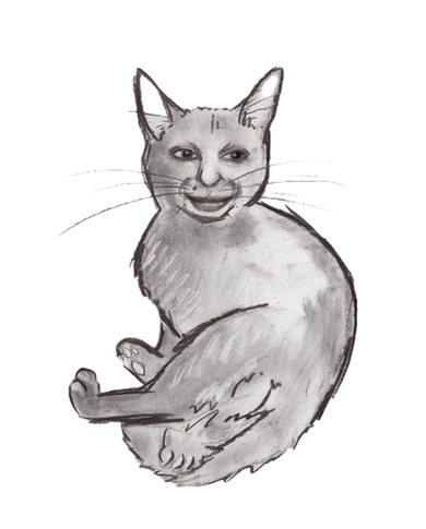 Amy McCatty.png
