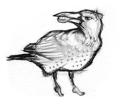 Sheryl Crow.jpg