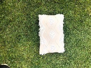 Gold Tassle Cushion