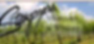 Screen Shot 2020-03-06 at 1.21.11 PM.png