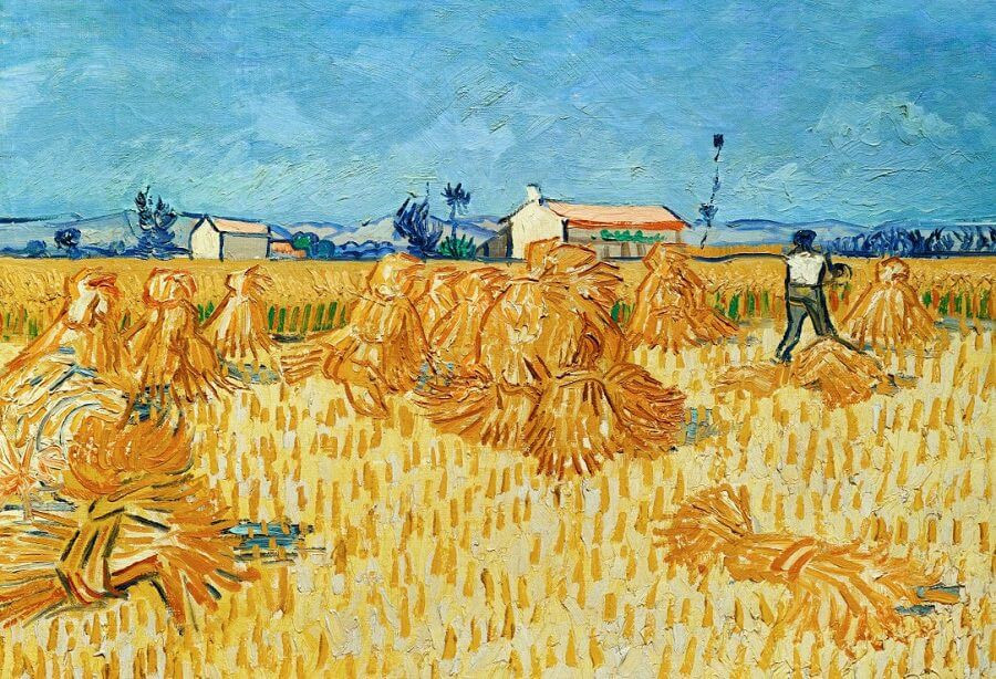harvest in provence by van gogh