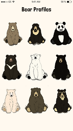 Bear Profile Page@2x.png